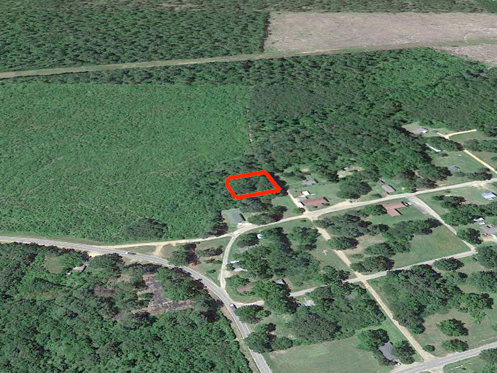 Vast Cheap Carthage Arkansas Homesite - Image 2