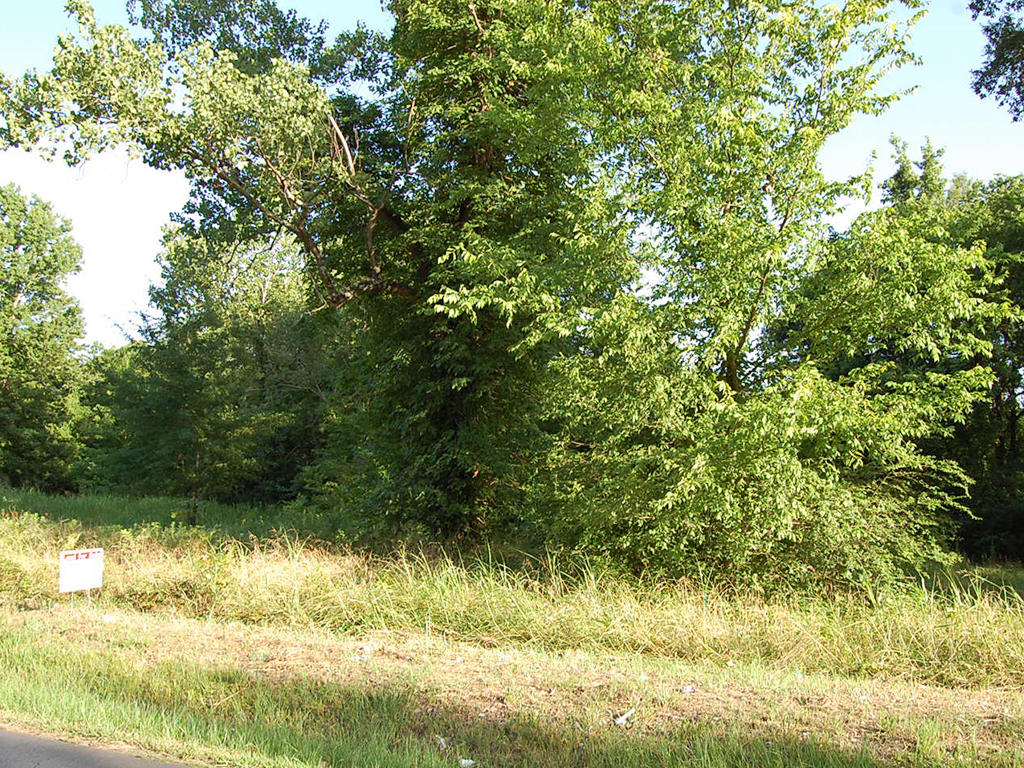 Amazing Corner Lot in Heart of Pine Bluff - Image 0