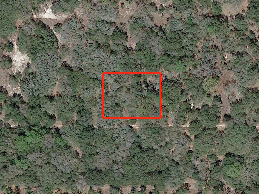 Uniquely Located Quarter Acre of Florida Land - Image 1
