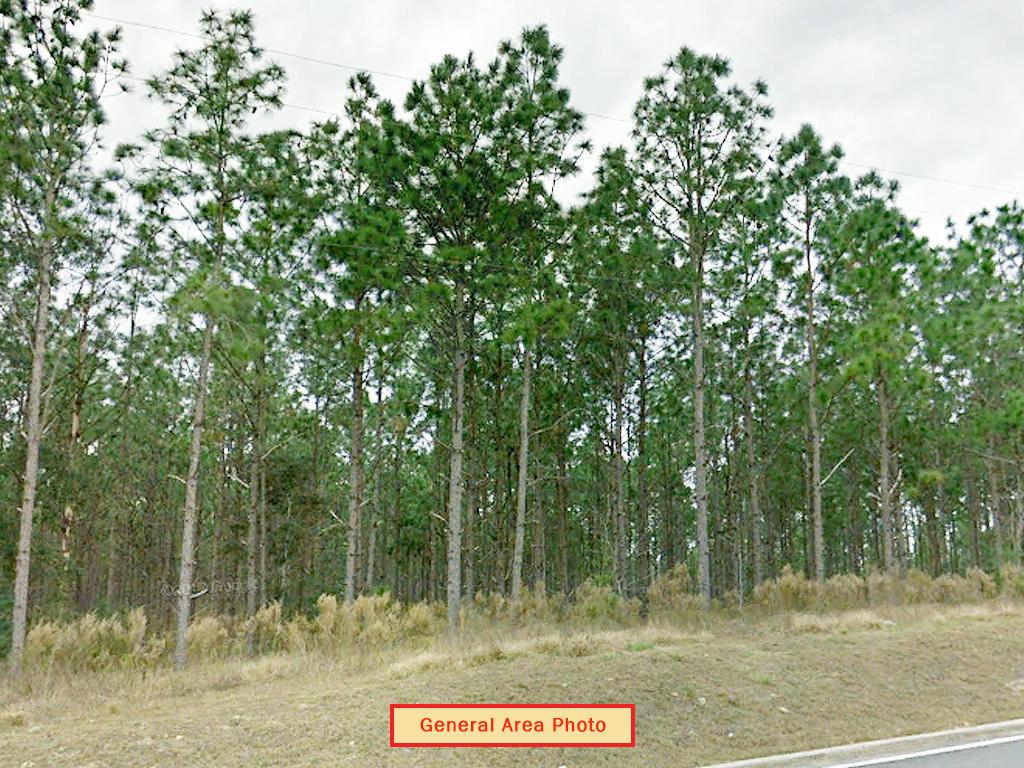 Uniquely Located Quarter Acre of Florida Land - Image 0