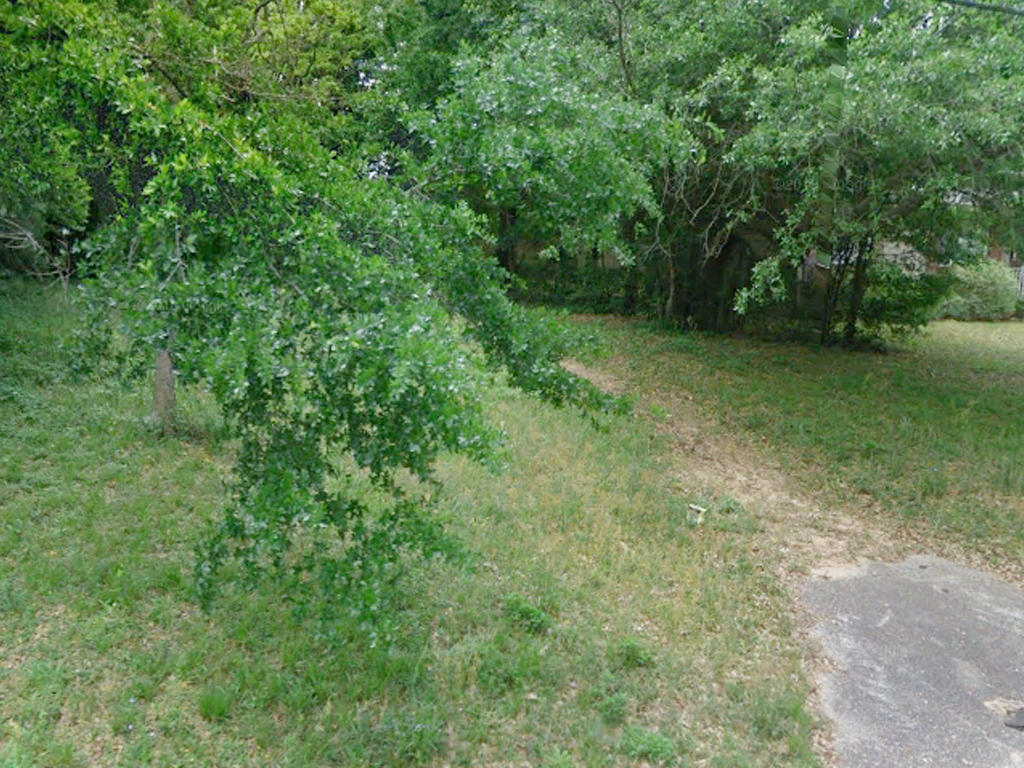 Residential Lot in Florida Panhandle - Image 1