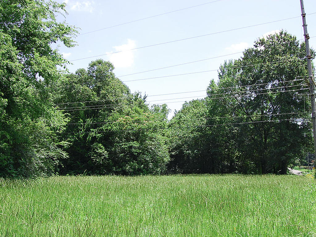 Huge Mineola Texas City Lot - Image 0