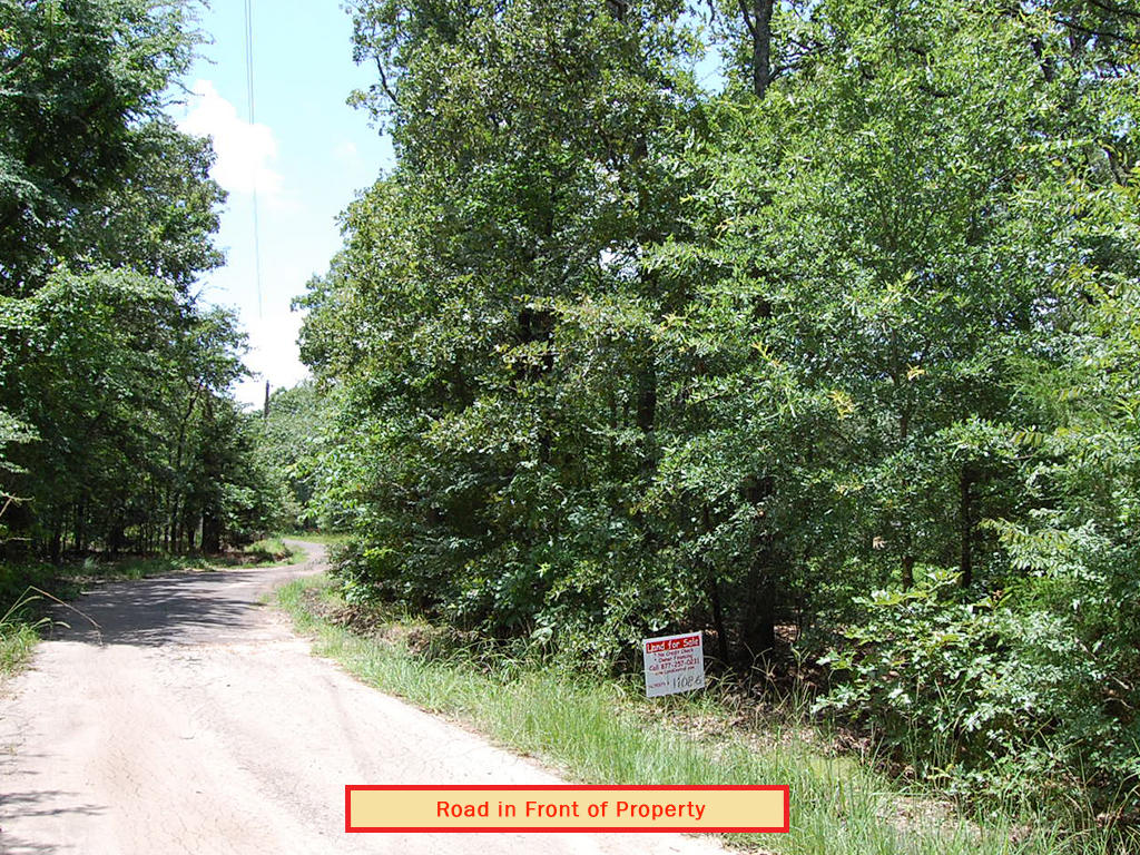 Woods Lake Double Lot Homesite - Image 4