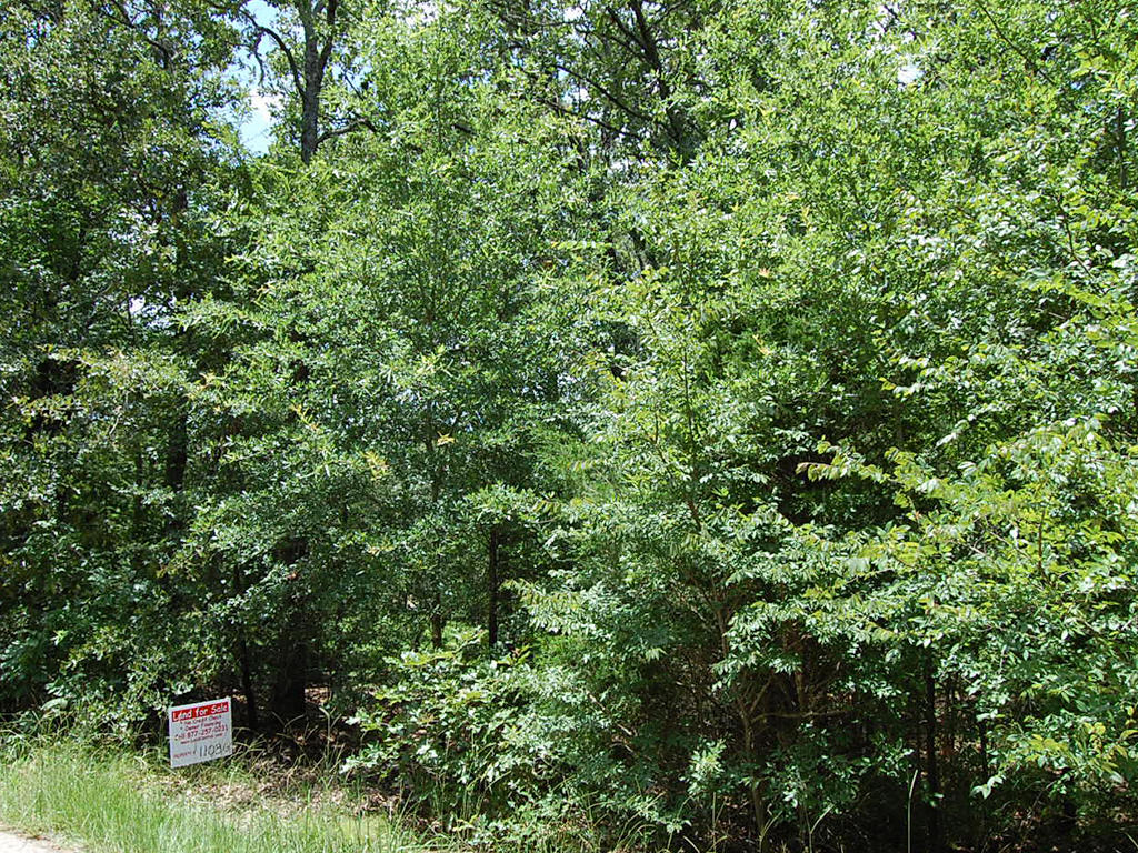 Woods Lake Double Lot Homesite - Image 1