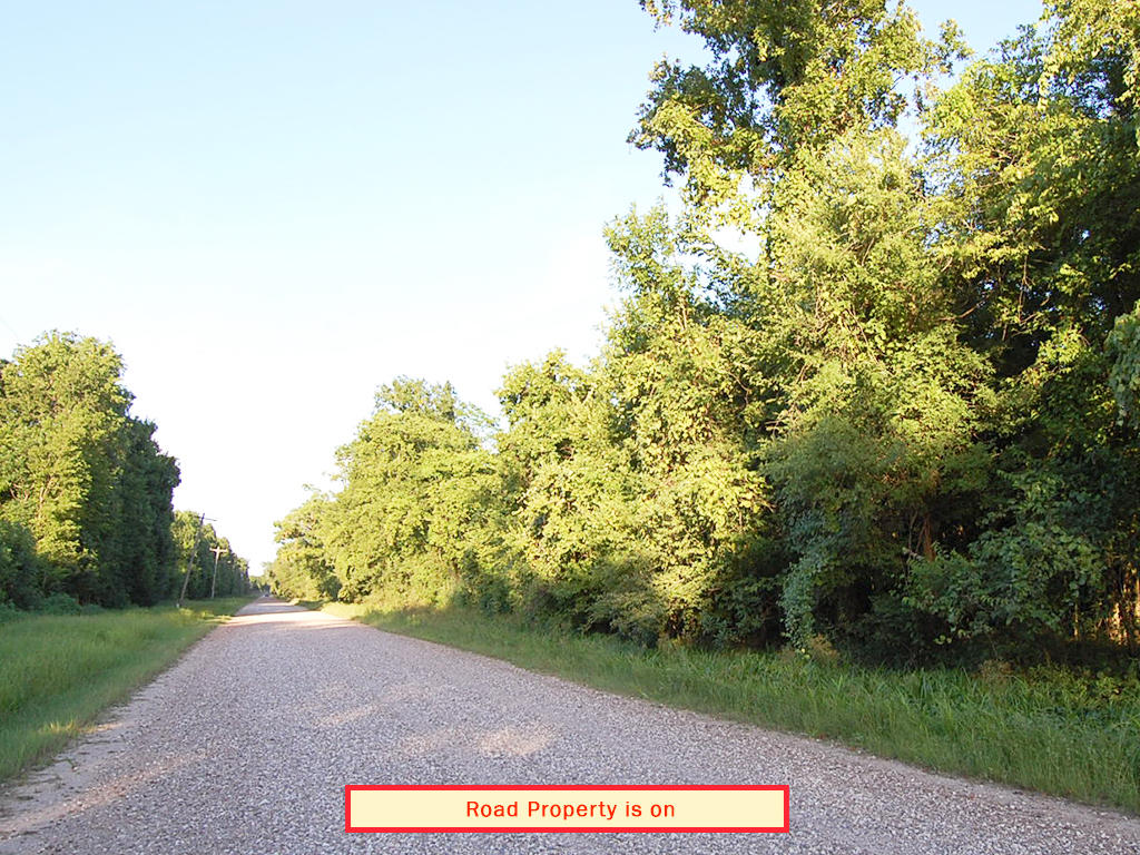 Liberty Texas Acreage on Maintained Dirt Road - Image 4