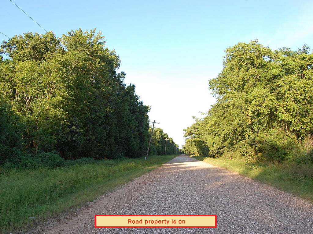 Wooded Property with Power Available - Image 5
