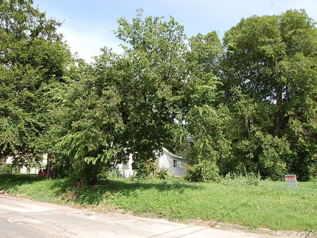 Ideal Land Investment in Lone Star State - Image 4
