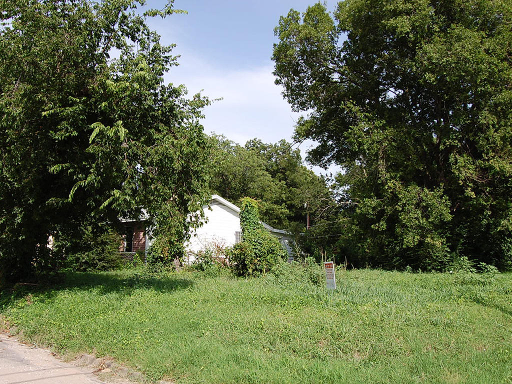 Ideal Land Investment in Lone Star State - Image 1