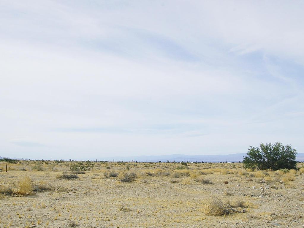 Amazing Opportunity on Spacious Desert Land - Image 1