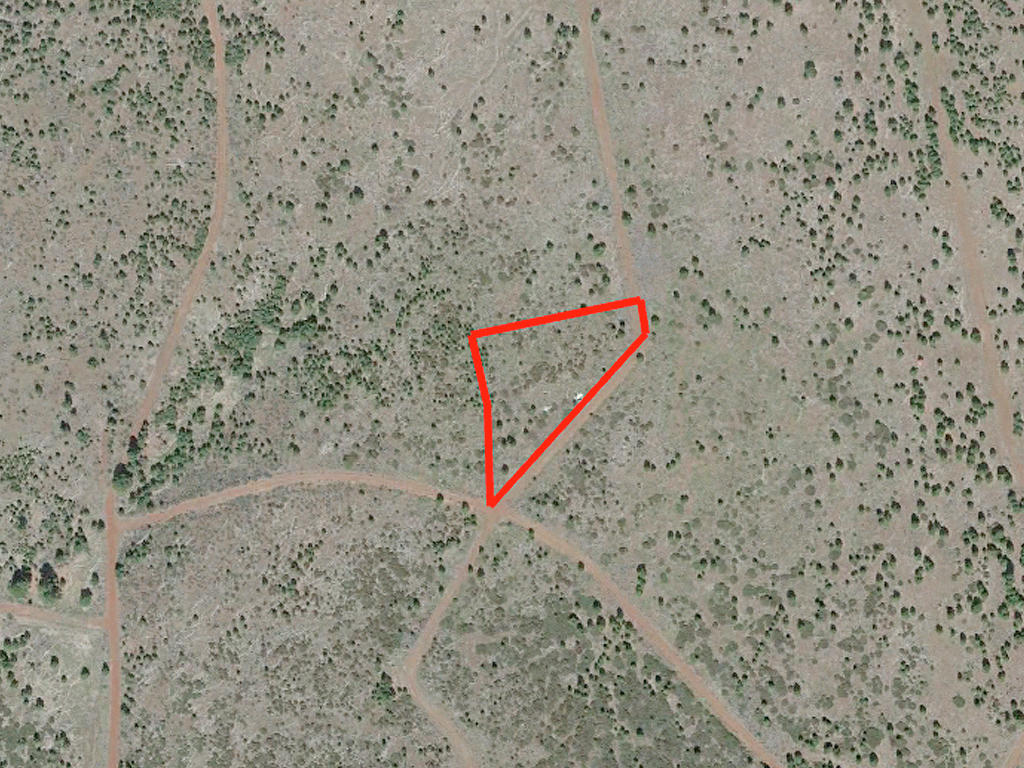 1.4 Acre Property About 30 Miles from Alturas - Image 2