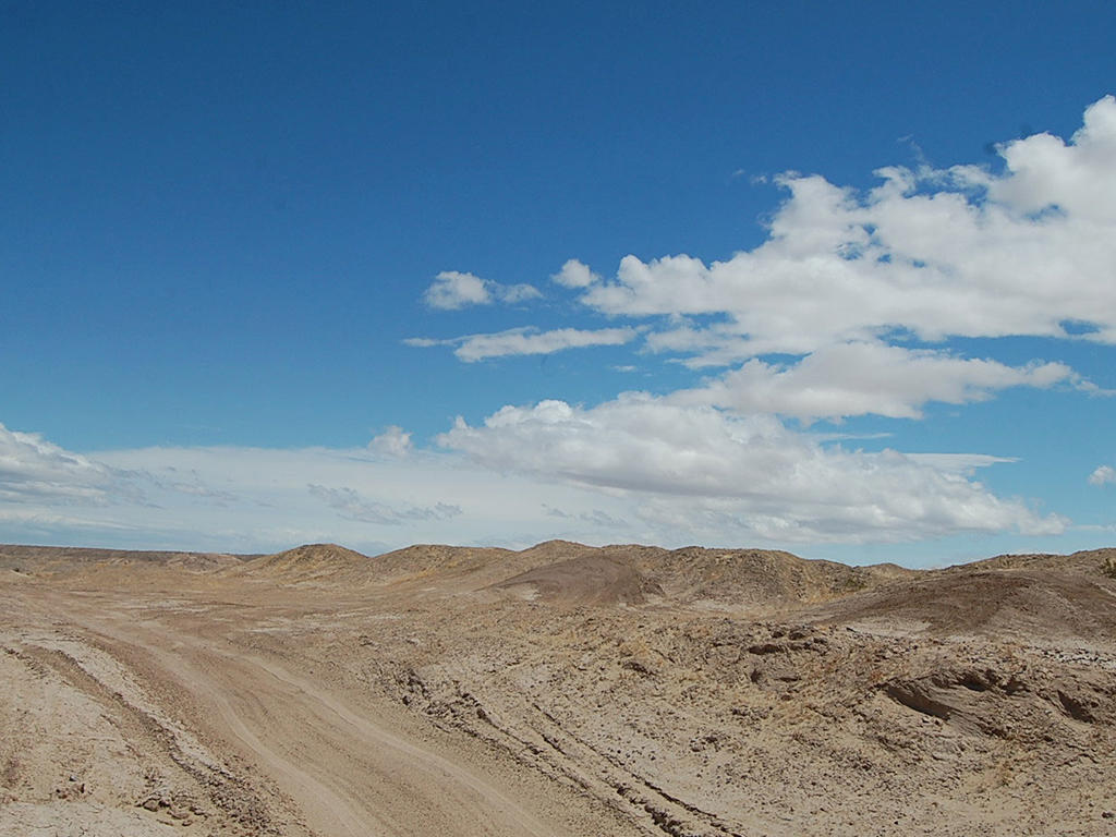 Twelve Acres of Undeveloped Land Near the Salton Sea - Image 4