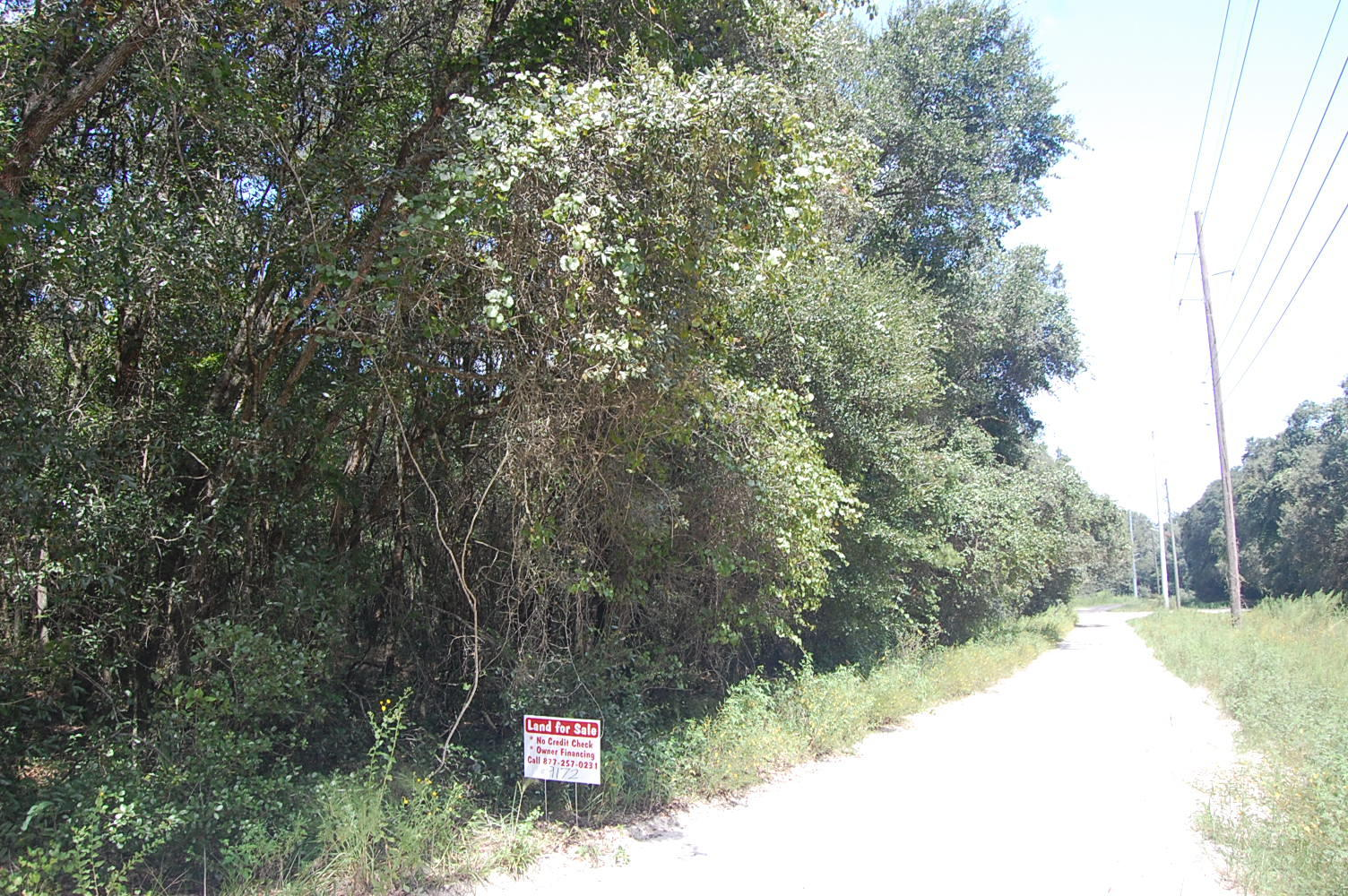 Rural 1+ Acre lot in Orange City - Image 0