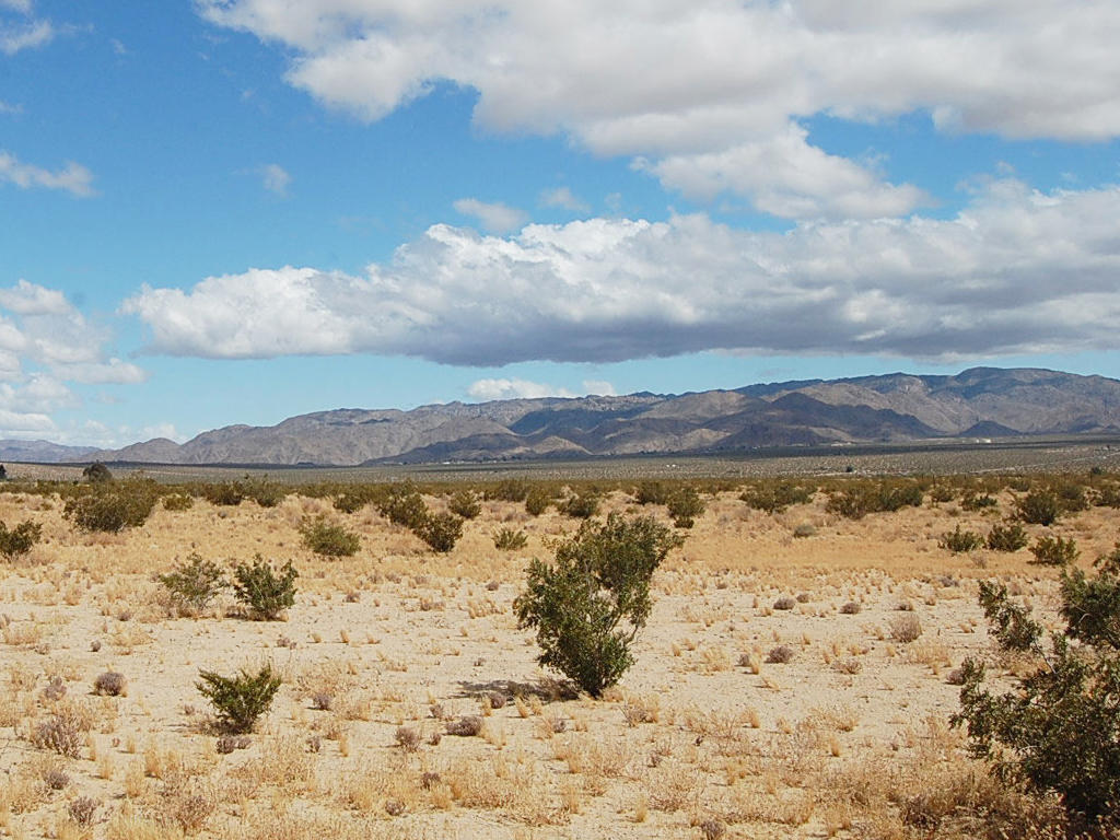 Unobstructed 10 Acres in California Desert - Image 5