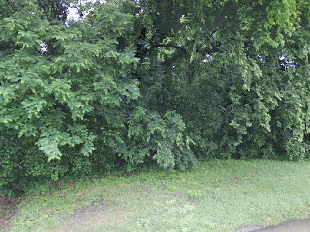 Charming Southern Lot in Vicksburg - Image 1