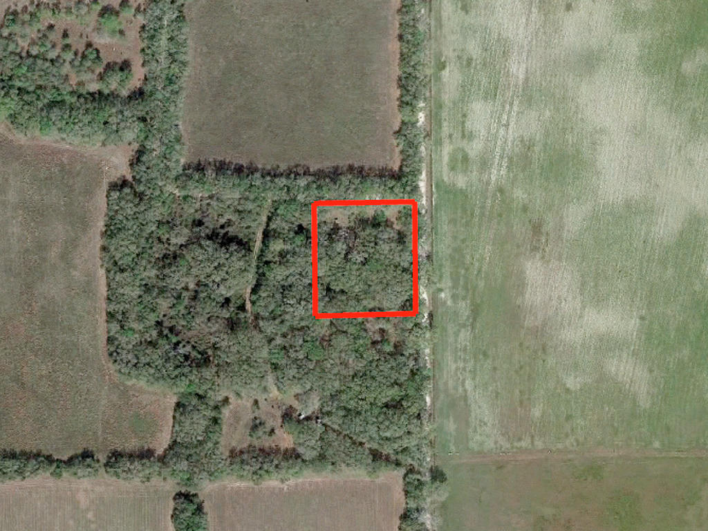 Beautiful 1 Acre in the Gateway to Florida - Image 2