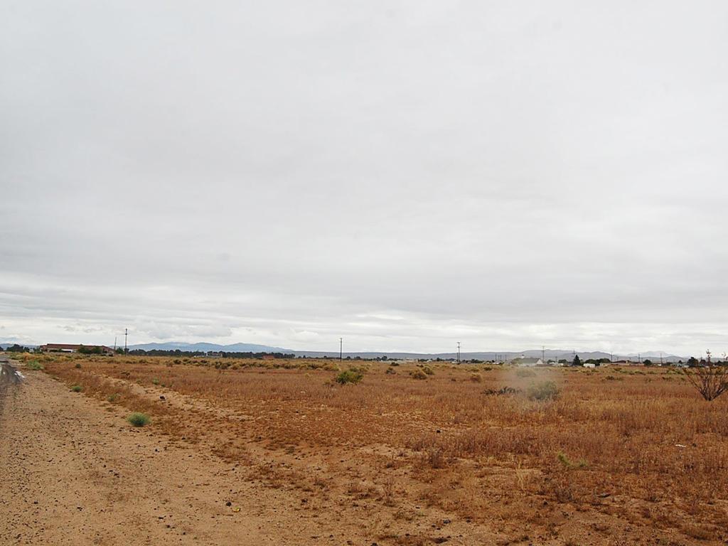 Amazing Land Opportunity on Quarter Acre - Image 4
