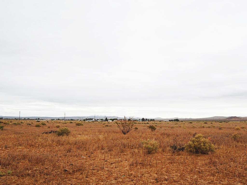 Amazing Land Opportunity on Quarter Acre - Image 1