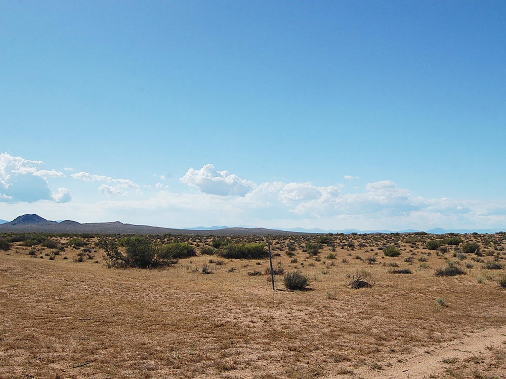 Peaceful Desert Land on 2 Acres - Image 0