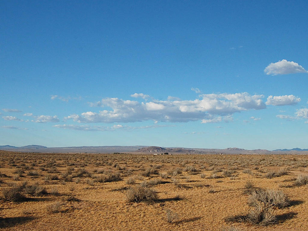 Freedom Found on 10 Acre Desert Hideaway - Image 0