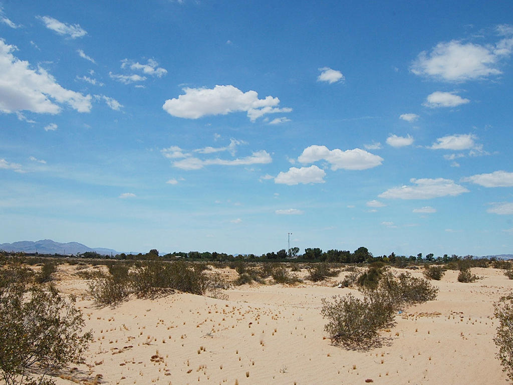 5 Acres on Gorgeous Desert Landscape - Image 4
