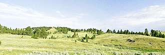 40 Acre Escape in the Beautiful Montana Outback