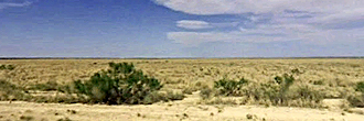 Over 5 Acres in Reeves County