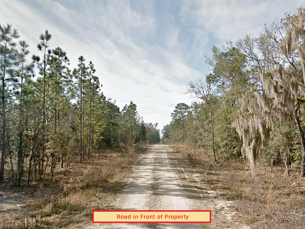 Prime Florida Real Estate on Quarter Acre - Image 4