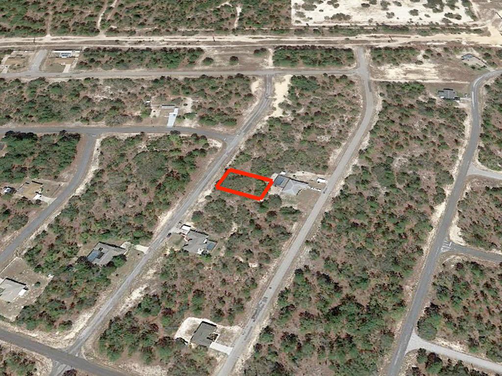 Developing Florida Property near the Gulf Coast - Image 2