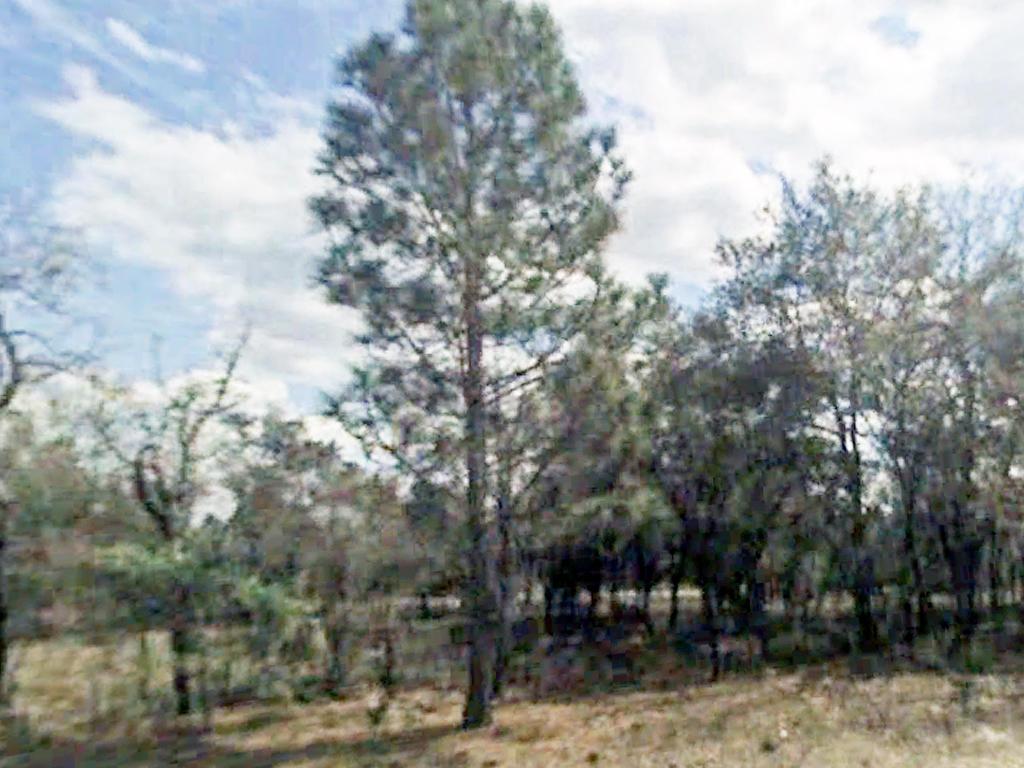 Developing Florida Property near the Gulf Coast - Image 3
