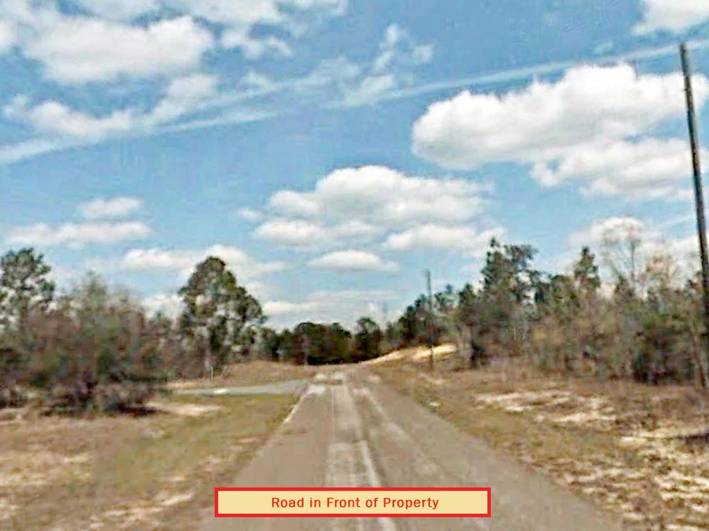 Developing Florida Property near the Gulf Coast - Image 4