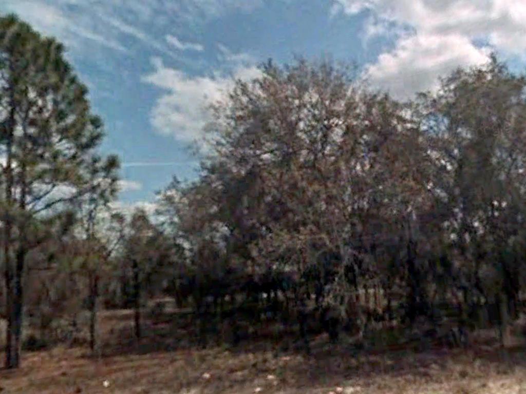 Developing Florida Property near the Gulf Coast - Image 0