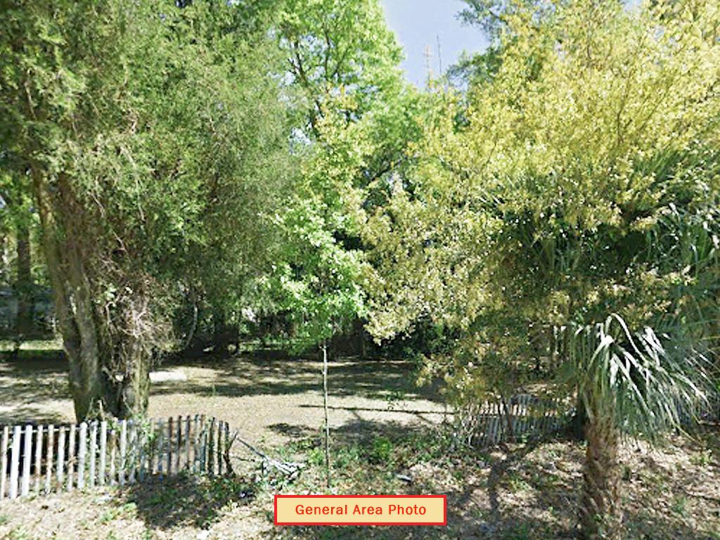 Dream Location in Florida Panhandle - Image 4