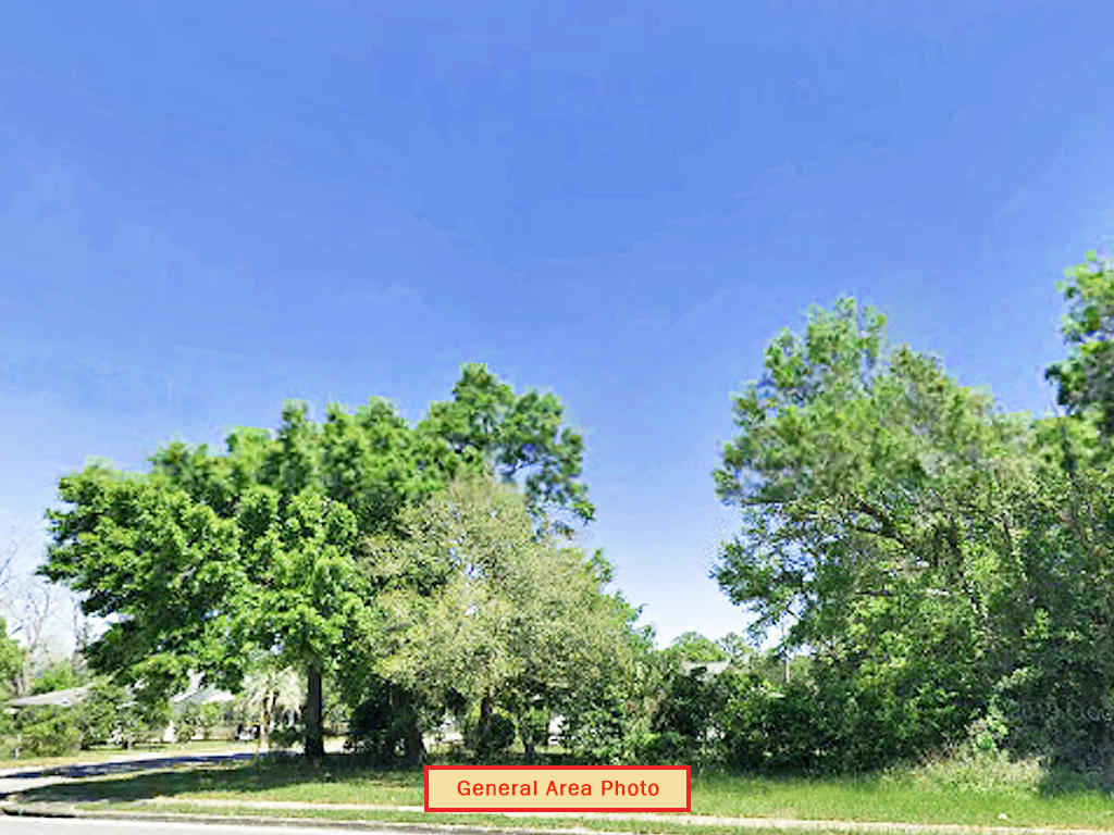 Dream Location in Florida Panhandle - Image 1