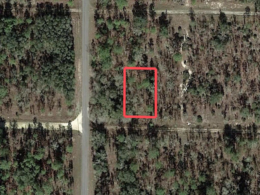 Rectangular Quarter Acre in Rural Florida - Image 1