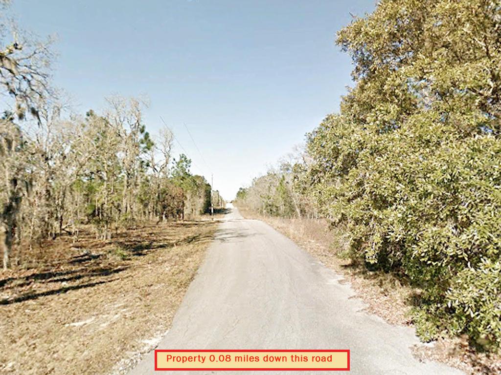 Rectangular Quarter Acre in Rural Florida - Image 5