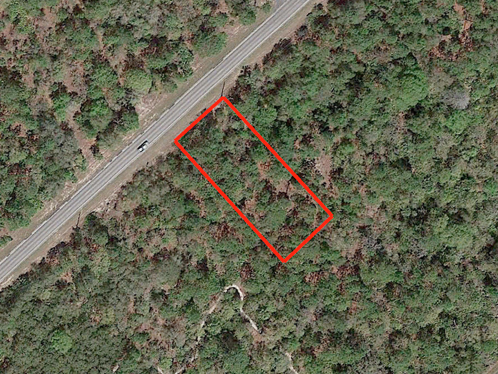 Over Half Acre Treed Lot in Crystal River - Image 2