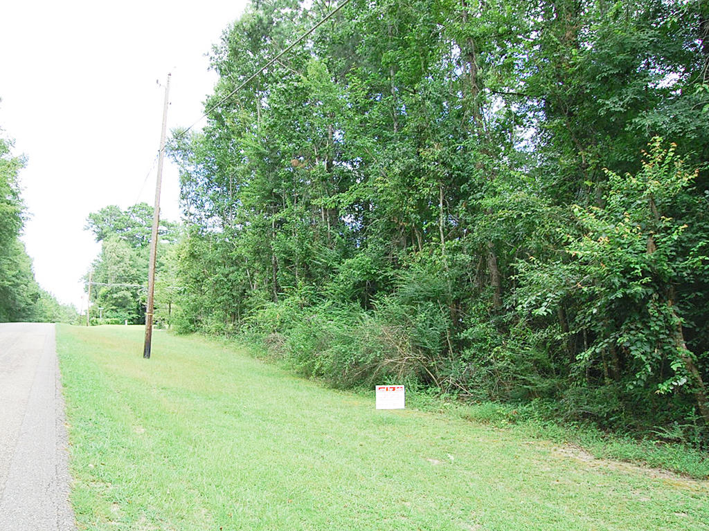 More than a Quarter Acre Near Coosa River - Image 1