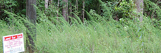 Nearly 1 Acre Near Coosa River