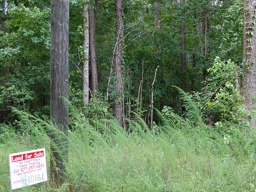 Nearly 1 Acre Near Coosa River - Image 0
