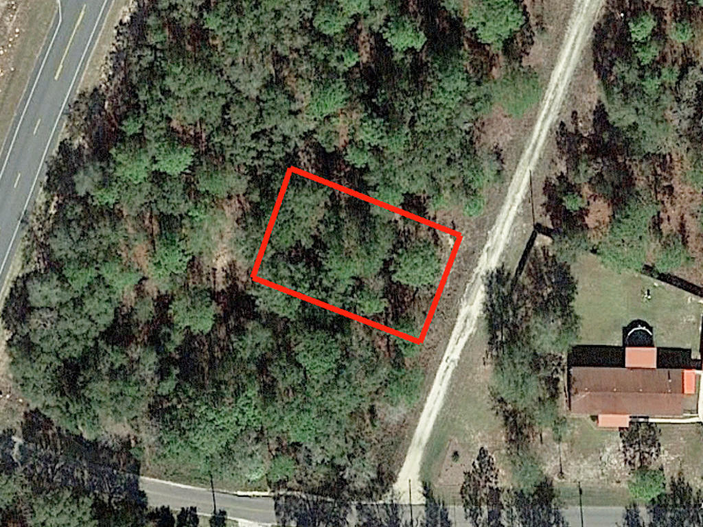Fertile Florida Land on Near Quarter Acre - Image 1
