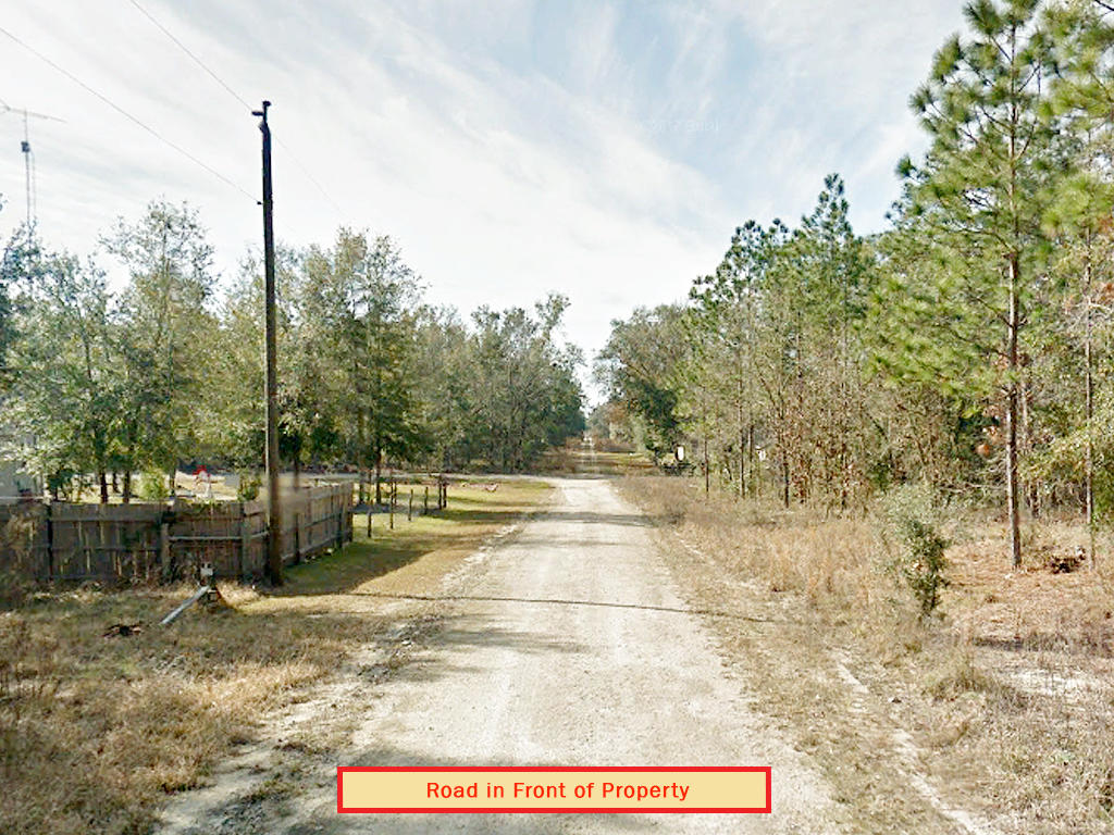 Fertile Florida Land on Near Quarter Acre - Image 4