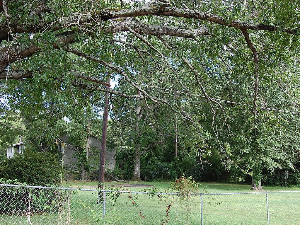 Beautiful Property Near Alabama River - Image 3