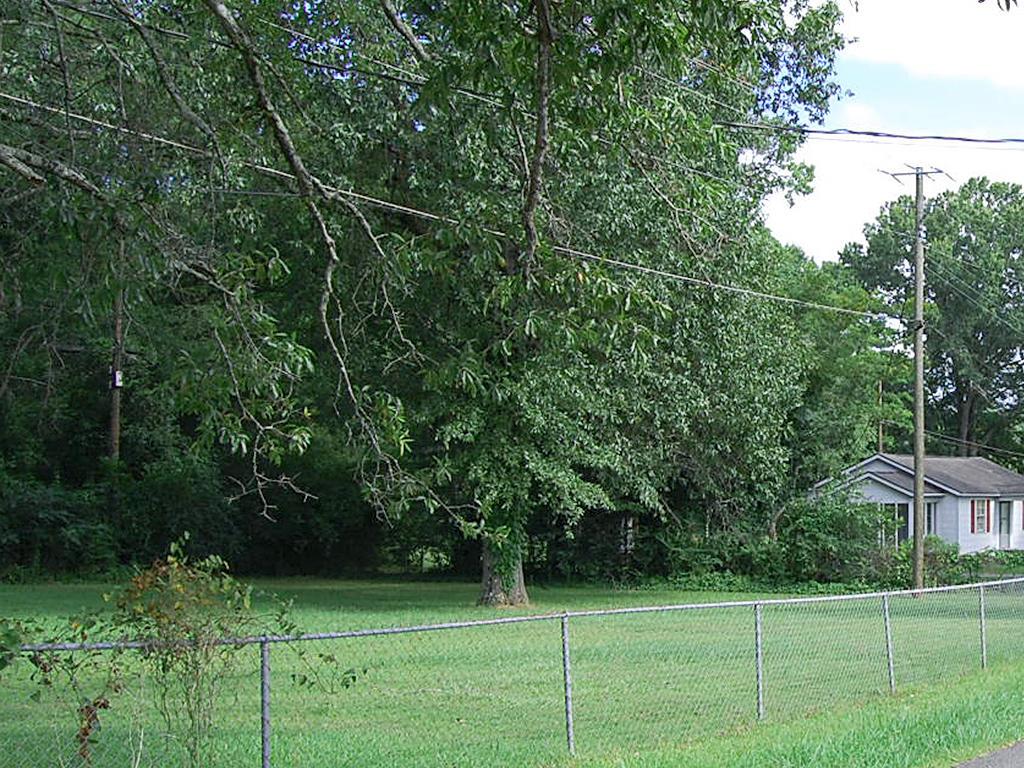 Beautiful Property Near Alabama River - Image 1
