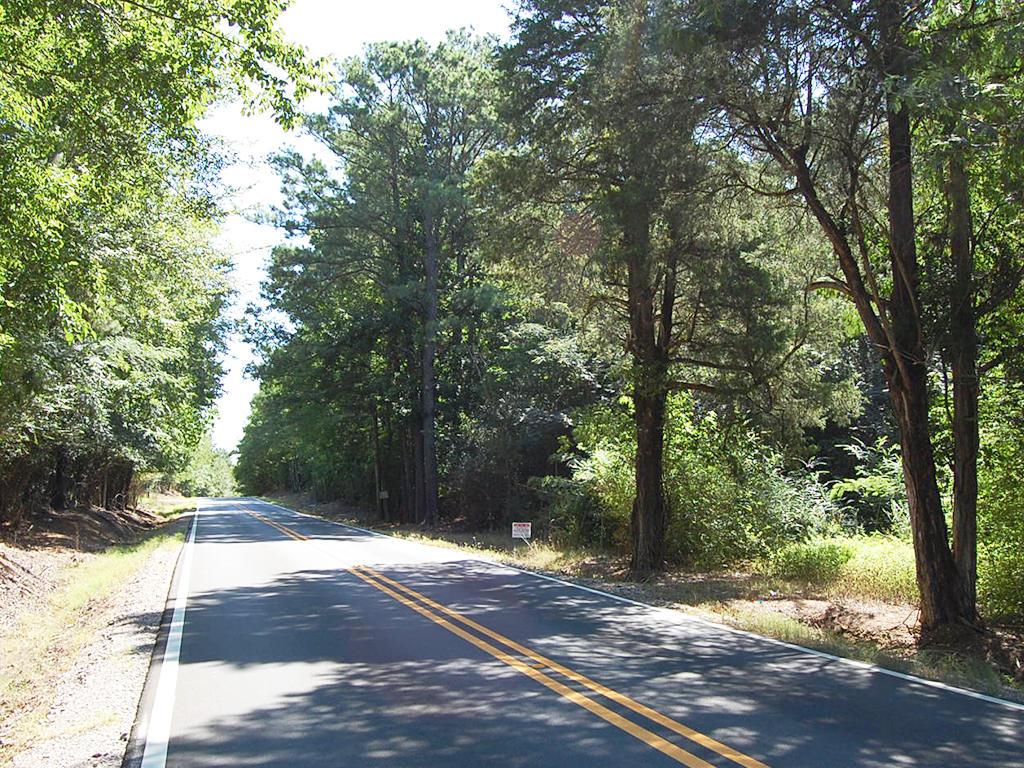 Prime Real Estate in Adger Alabama - Image 5