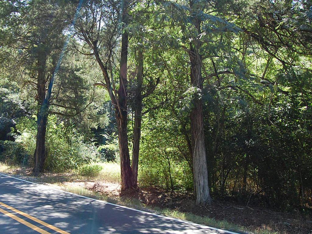 Prime Real Estate in Adger Alabama - Image 1