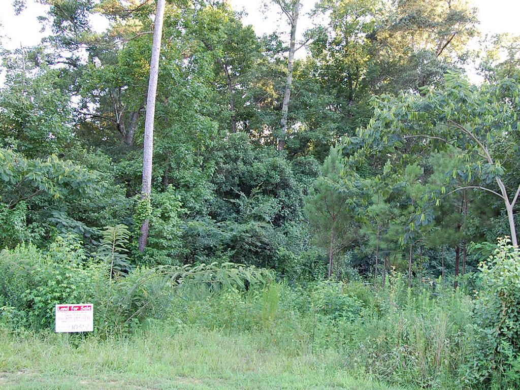 Quarter Acre Lot in Nice Alabama Neighborhood in Phenix - Image 4