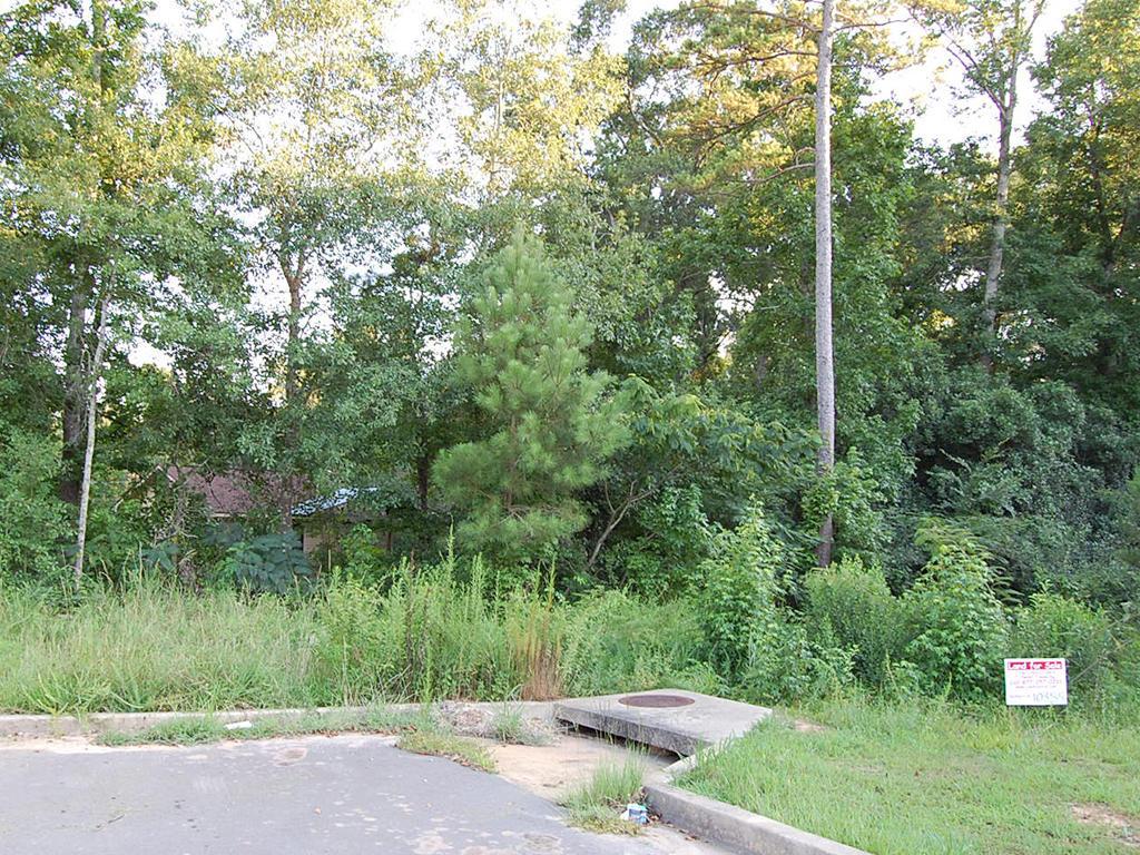 Quarter Acre Lot in Nice Alabama Neighborhood in Phenix - Image 1