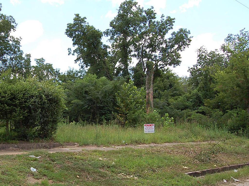 Beautiful Plot Near Alabama River - Image 4