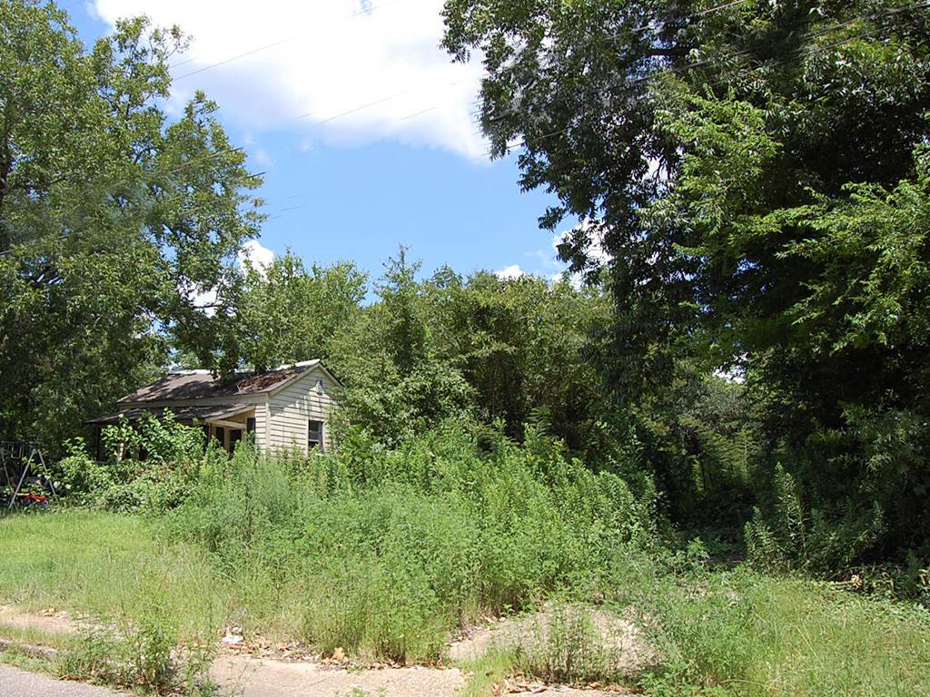 Extravagant Selma Urban Property - Image 1