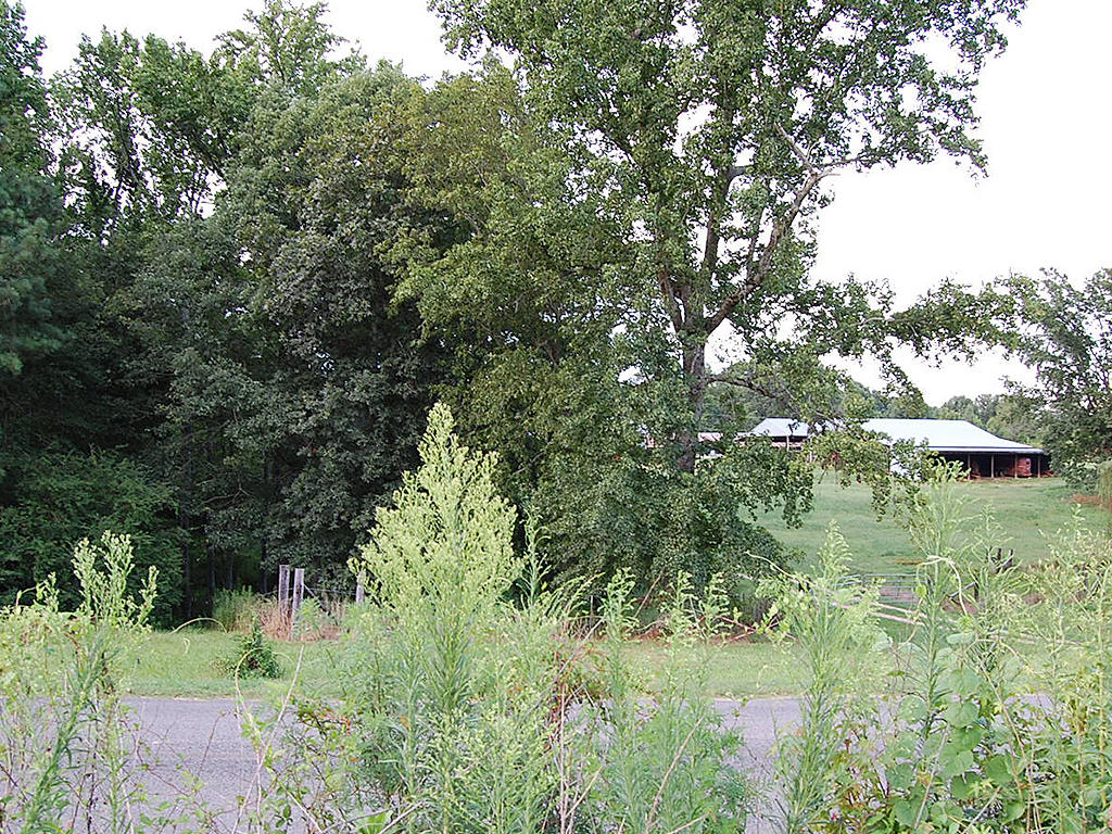 Great One Acre Property on Alabama Country Road - Image 3